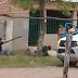 (video) SÁENZ PEÑA - ATACAN A POLICÍAS EN PROCEDIMIENTO: DOS AGENTES LESIONADOS