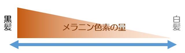 【カラダ】白髪が生えるメカニズム!!白髪を増やさない食生活とライフスタイルで白髪を改善!!