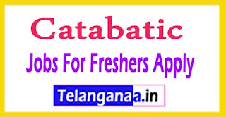 Catabatic Recruitment 2017 Jobs For Freshers Apply
