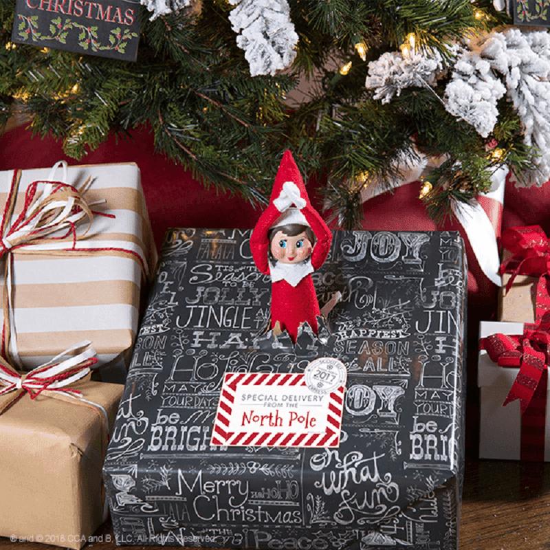 elf special delivery parcel
