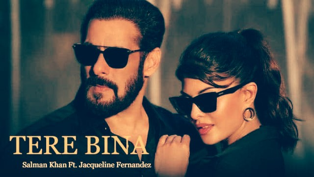 Tere Bina Lyrics - Salman Khan Song