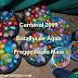Carnaval 2009 - Batalha de Água