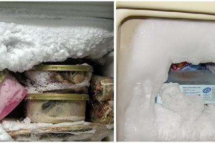 Cuup Mudah Begini Cara Menghilangkan Tumpukan Bunga Es di Freezer Kulkas