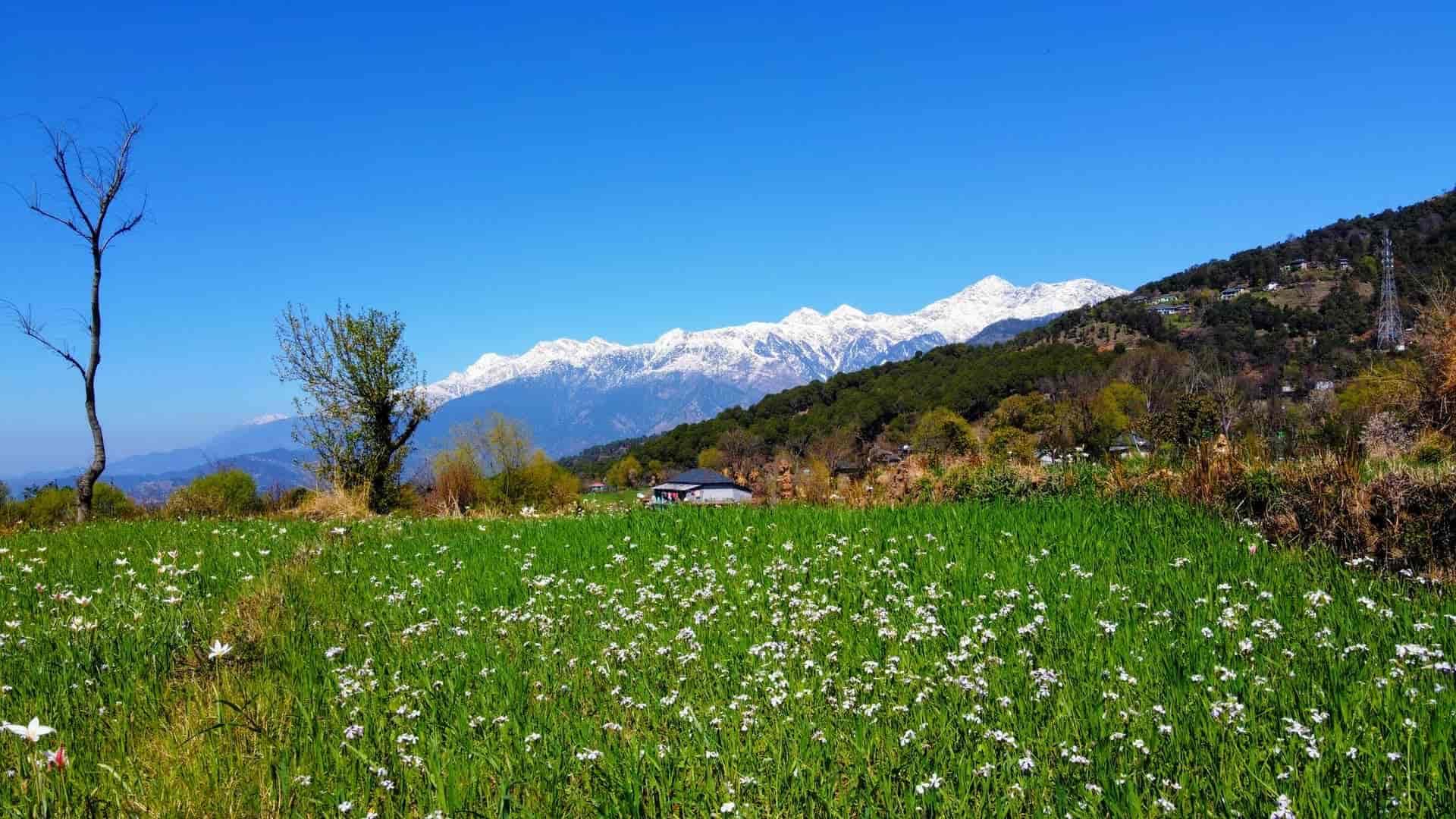 about-bir-valley