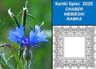 http://iwanna59.blogspot.com/2020/07/podsumowanie-czerwcowych-kartek-zabka.html