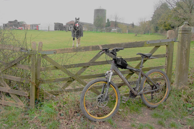 bike leaning against a gate, horse looking at me