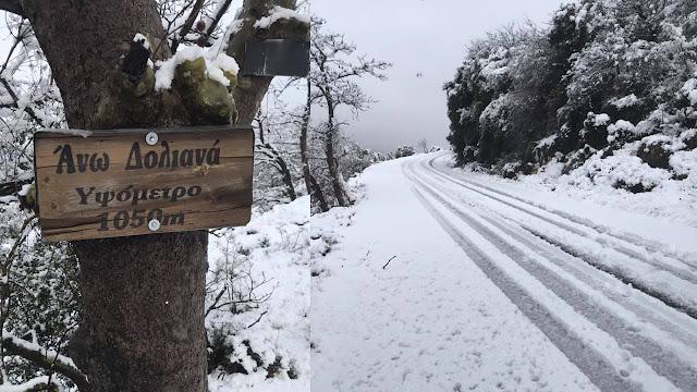 Χιόνια χωρίς ιδιαιτερα προβλήματα στα Άνω Δολιανά - Επί ποδός ο Δήμος Βόρειας Κυνουρίας