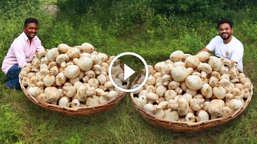 Mushroom Risotto | How To Make Perfect Mushroom Risotto | Italian Recipe by Grandpa Kitchen