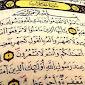 Terjemah Tafsiriyah Surat Al-Hujurat Lengkap Ayat 1 - 18