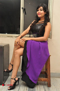 Telugu Actress Rachana Smith Stills at Money is Honey Audio Release  0080.jpg