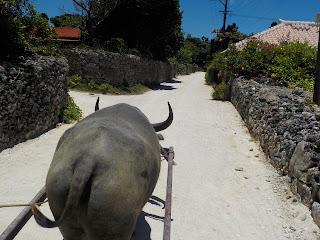 牛車からの風景4