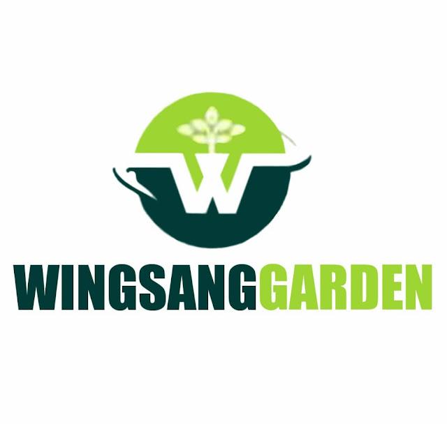 Pusat Layanan Jasa Tukang Taman Wingsang Garden