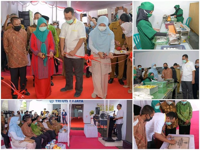 Resmikan Pabrik Teh Daun Kelor Terbesar Di NTB, Gubernur Apresiasi CV. Tri Utami Jaya