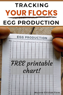 Chart for tracking how many eggs chickens lay each month.