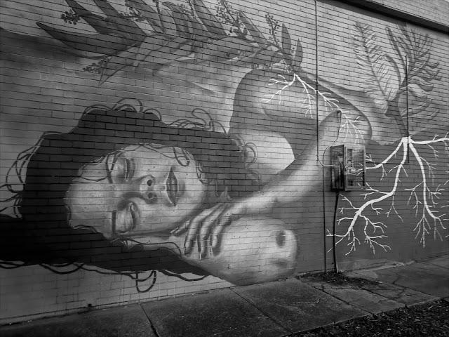 Canberra Street Art | Cook mural by Faithsprays