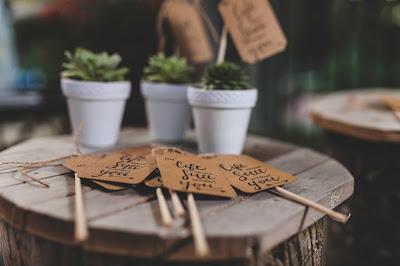 Macetas con suculentas y carteles para los invitados