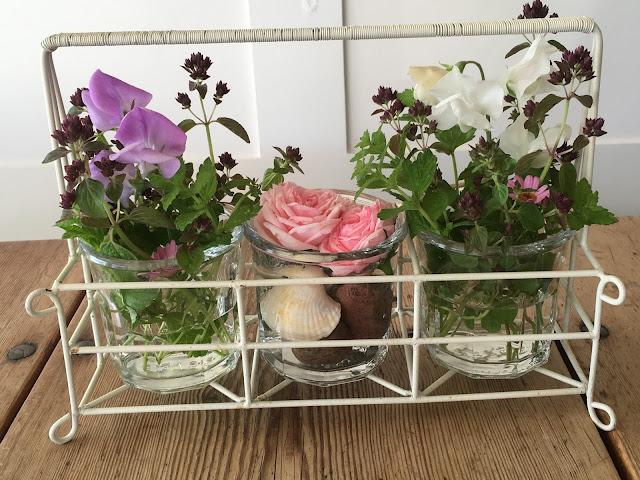 Roser sammen med erteblomster og oregano - på hytta