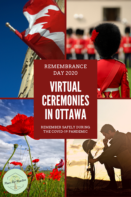 Canada remembers: Virtual Remembrance Day ceremonies in Ottawa during the COVID-19 pandemic