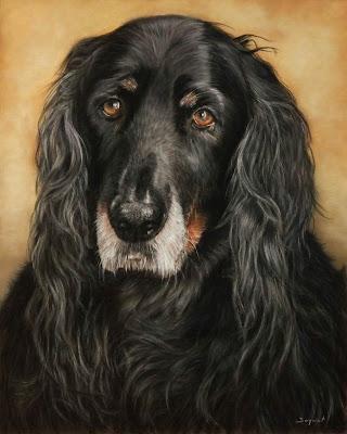 Portrait animalier, chien, sur commande, d'après photo