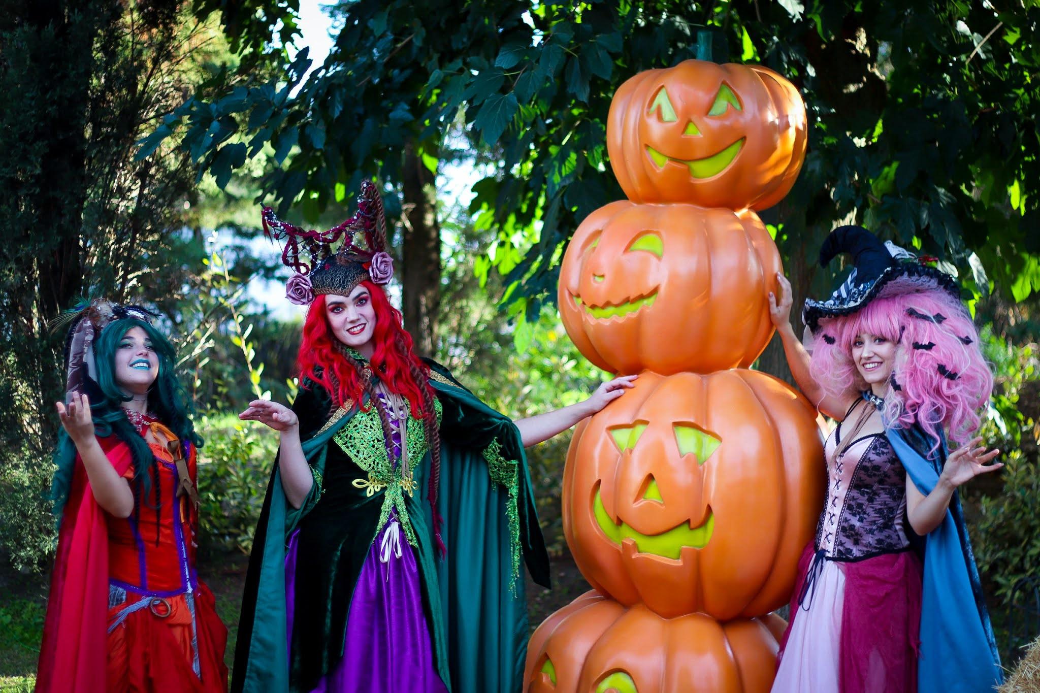 Brujitas- Halloween - Parque Warner