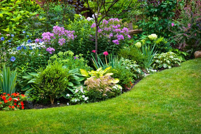 The perfect floral combination design with a simple large lawn