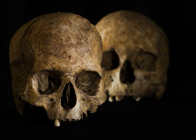 Dig in southern Spain reveals decapitation, trepanation and other extraordinary burial rituals