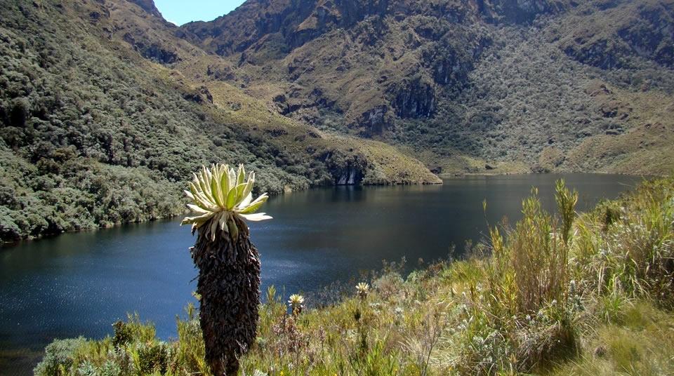 Parque Nacional Natural Páramo de Las Hermosas