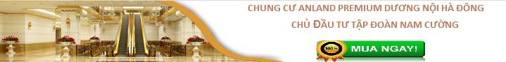 chung-cu-anland3
