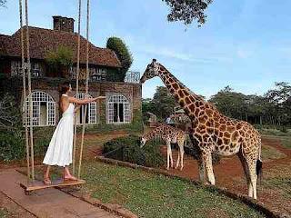 सपने में जिराफ देखना sapne me giraffe dekhna in hindi
