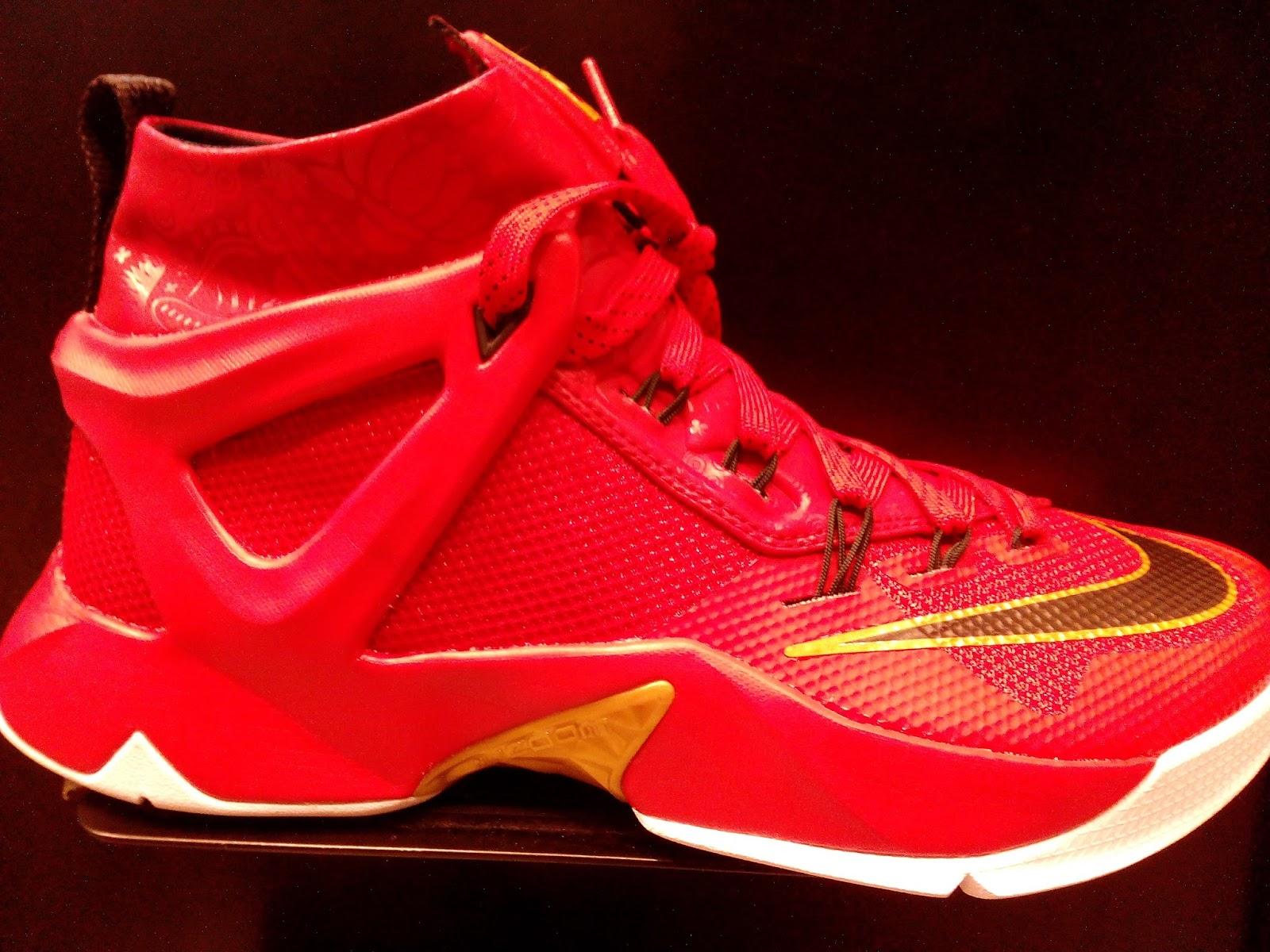 105dd154e7f6 Nike Lebron Ambassador VIII
