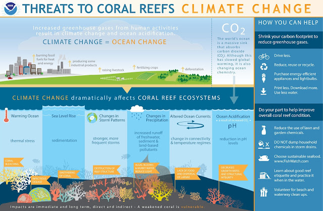 coral reefs affected by climate change
