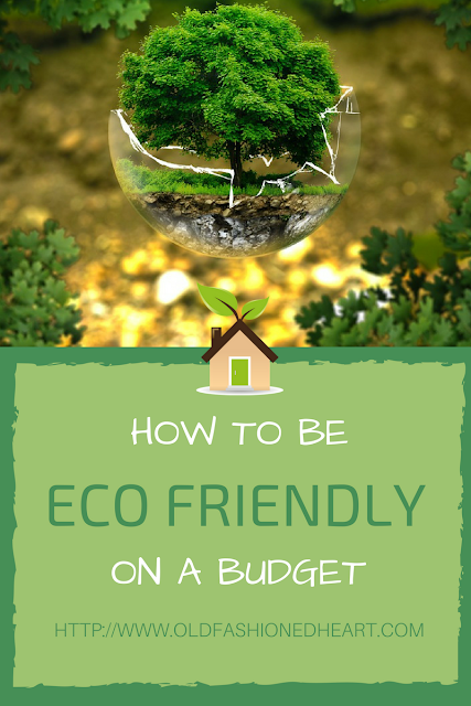 HOW TO BE ECO FRIENDLY ON A BUDGET