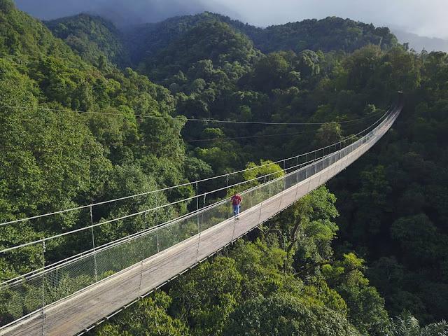 Jembatan Gantung Situ Gunung Suspension Bridge