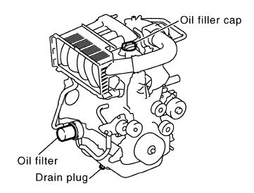 Navara D40 Oil Filter Location