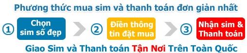 huong-dan-dat-sim-dai-gia