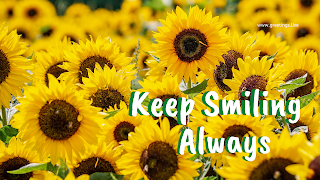 keep smiling always desktop wallpapers with sunflowers greetings images.