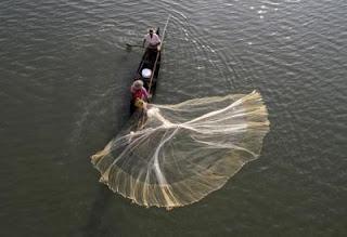 fishermana-need-fish-rightr