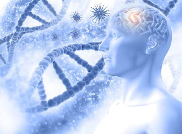 فيتامينات مقوية للاعصاب، افضل فيتامين للاعصاب، فيتامين الاعصاب