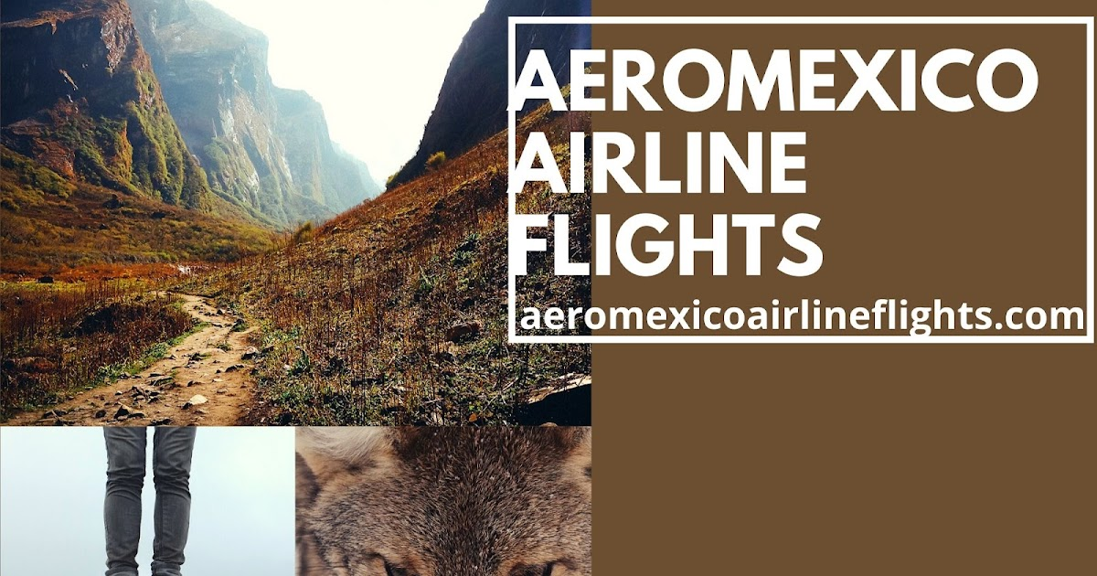 Is It a Good Idea to Use Credit Card to Book Aeromexico Airlines Flights?