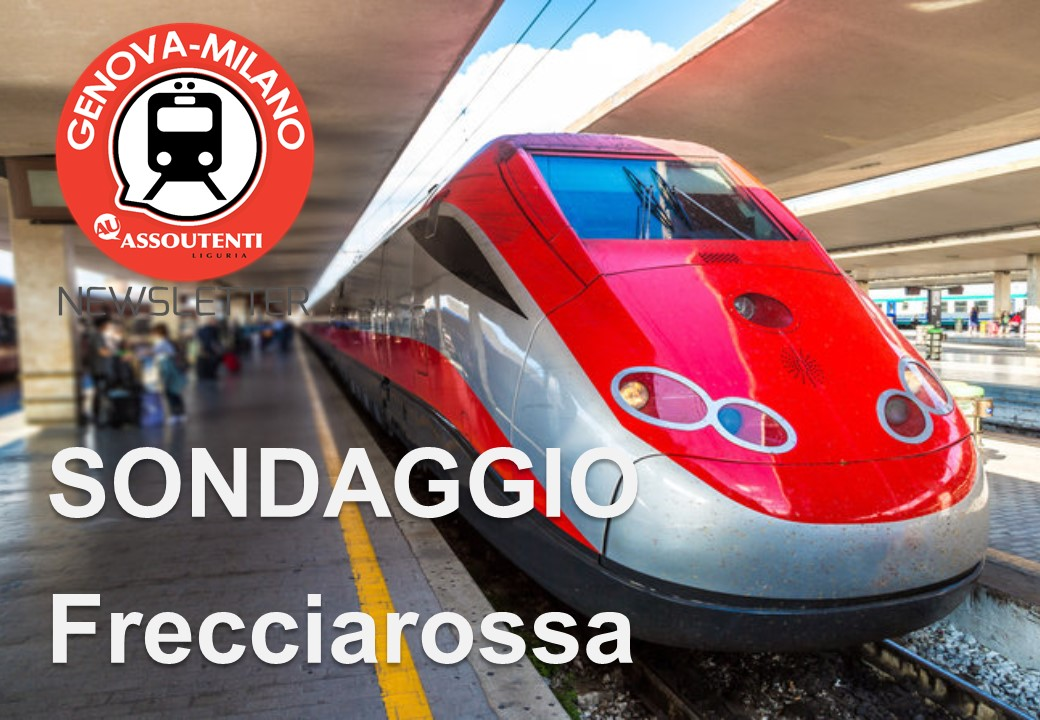 Frecciarossa survey: the results