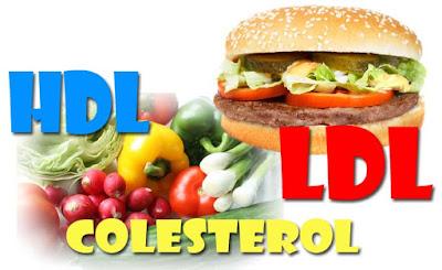 Existem dois tipos de colesterol