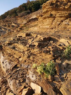 le rocce levigate dal vento