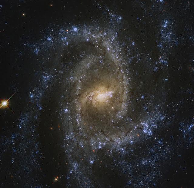 galáxia NGC 2835