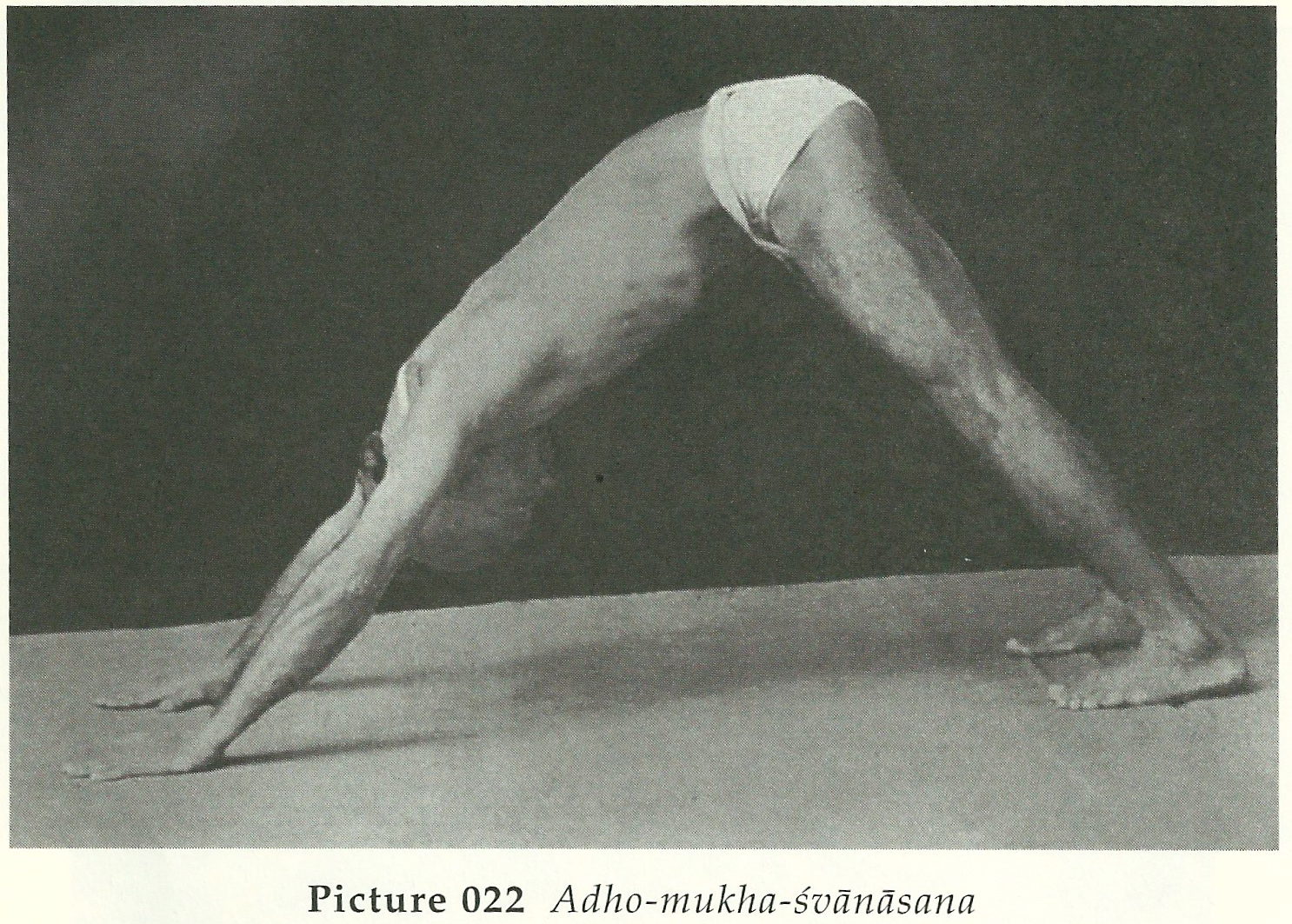 Scan as well X besides Private Yoga Workshop Thailand in addition Q Ymplkql Sl B E F De E Bb E C E B Grande as well E A Addf Fa Ec Ef Margo Hayes Escalade. on yoga flexibility