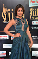 Shriya Saran in Beautiful Transparent Dark Gown IIFA Utsavam Awards 2017 049.JPG