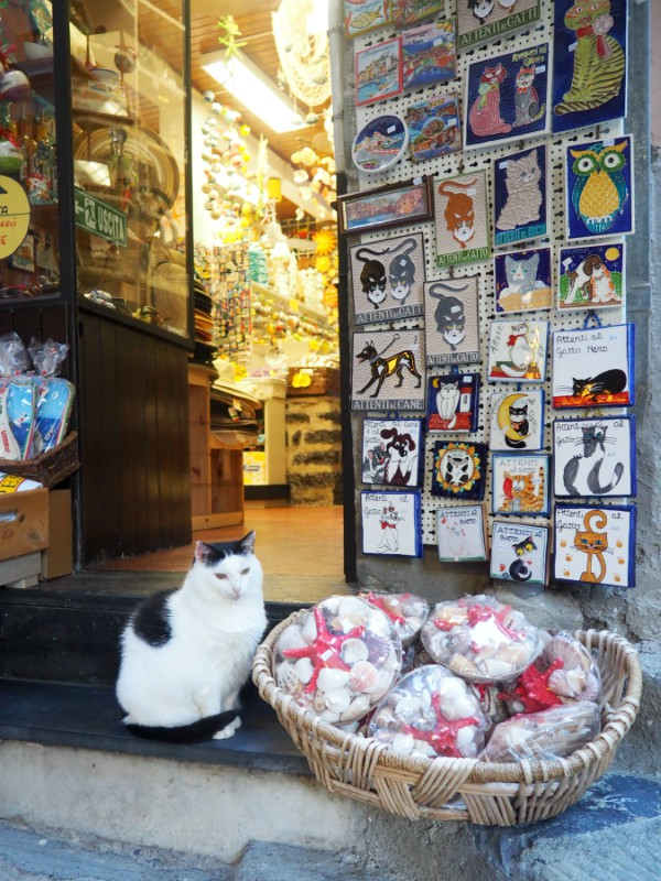 porto venere shop cat