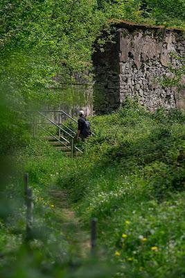 Pulvermühlenweg – Windeck | Erlebniswege Sieg | Wandern Naturregion-Sieg 16