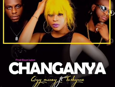 AUDIO| GIGY MONEY Ft. Tushynne ~ Changanya| [official mp3 audio]