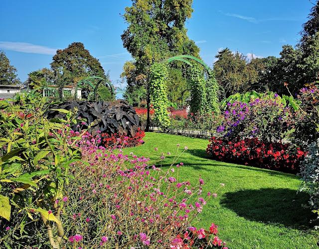 Fiori e piante Villa Pallavicino