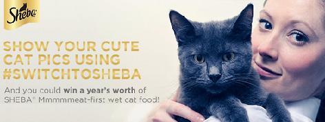 Sheba Cat Food Recall